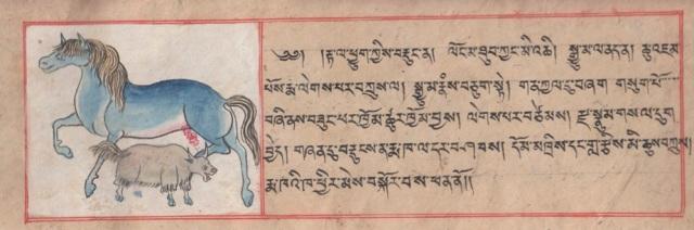 EVM Tibetan text