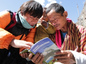 Identifying medicinal plants used by herders in the north of Bhutan.